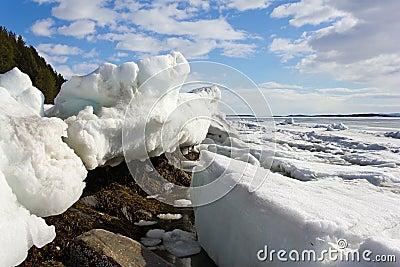 Melting of sea ice