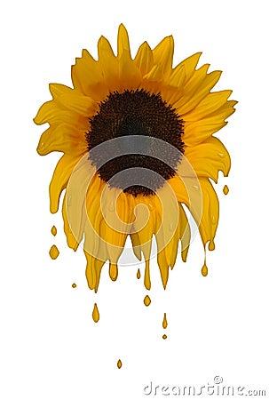 Melting Sunflower