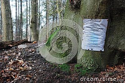 Memorial Flyer On Tree Trunk Free Public Domain Cc0 Image