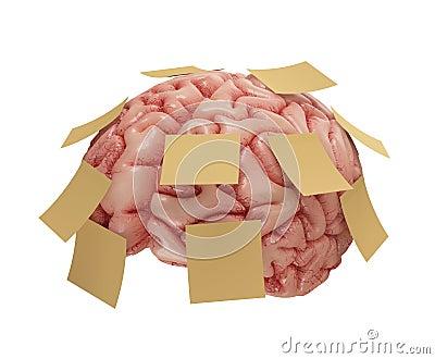 Memory Sticky Notes