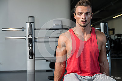 Men In The Gym Exercising Biceps With Dumbbells