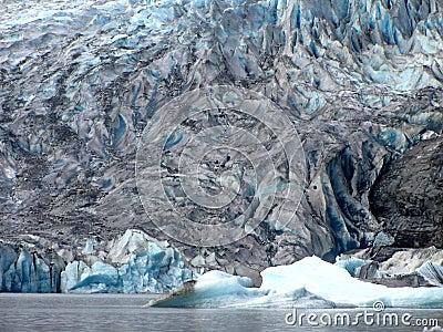 Mendenhall Glacier Face
