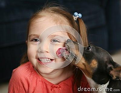 Menina bonito que está sendo lambida por um cão