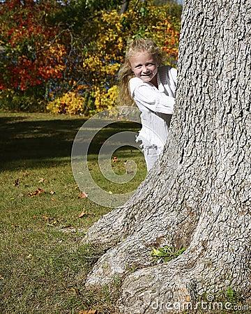 Menina que esconde atrás da árvore
