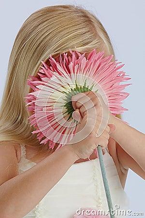 Menina que esconde atrás da flor cor-de-rosa