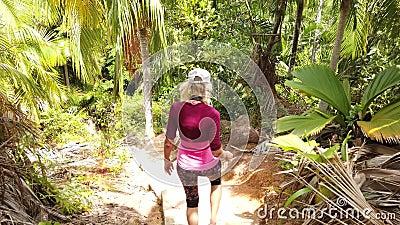 Menina trekking da palmeira de Coco de Mer filme