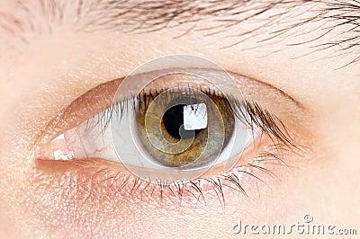 Mens eyes