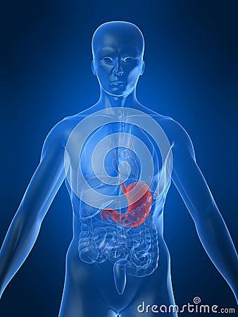 rugpijn darmen maag