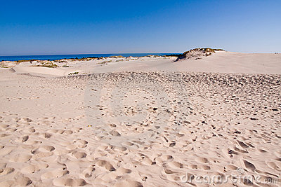 Mer baltique de littoral