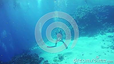 Mergulhador de mergulhador que entra em uma caverna subaquática Mar Vermelho, Egipto vídeos de arquivo