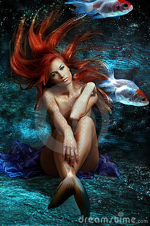 Free Mermaid Stock Image - 13037291