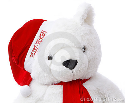 Merry Christmas Teddy bear