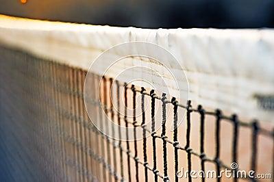 Mesh Tennis