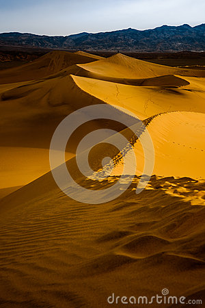 Mesquite Sand Dunes at Sunrise - Death Valley National Park