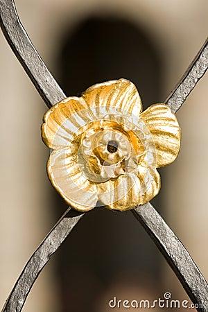 Free Metal Decoration Detail Stock Photo - 6798220