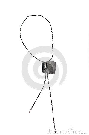 Metal seal with wire