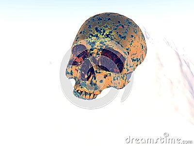 Metal War Skull