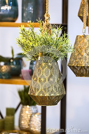 Free Metallic Bronze Hanging Flower Pot With Decorative Flower. Hanging Beautiful Flower Pot With Green Plant Stock Image - 110495531
