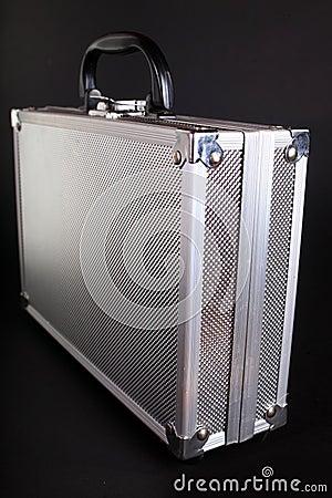 Metallic case