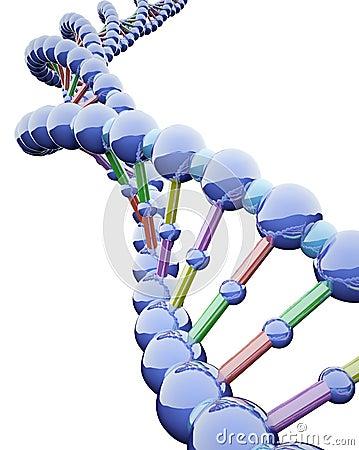 Metallic DNA Chains