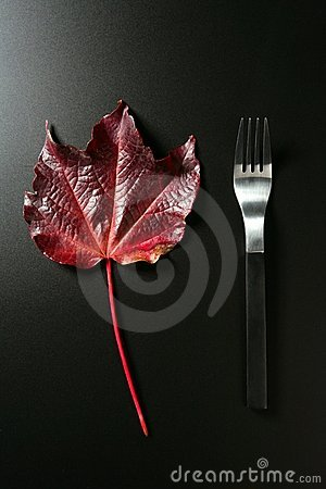 Metaphor, healthy diet low calories, a leaf