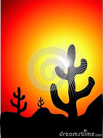 Mexican cactus landscape