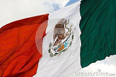 Mexican flag 3