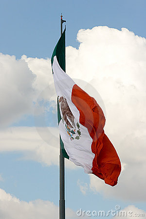 Mexican flag 5
