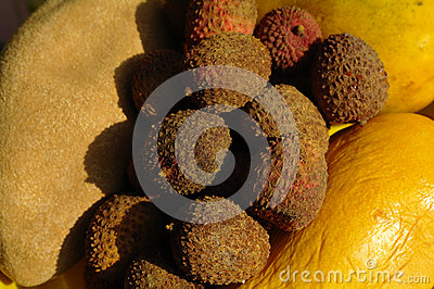 Mexican fruit
