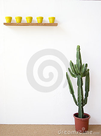 Free Mexican Scenery Royalty Free Stock Image - 234756