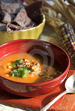 Free Mexican Soup Royalty Free Stock Photography - 1702447