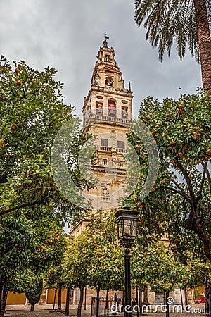 Mezquita-Cathedral Minaret, Cordoba IV