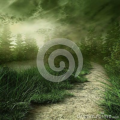 Mgłowy krajobraz