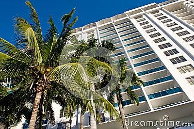 Miami condominium