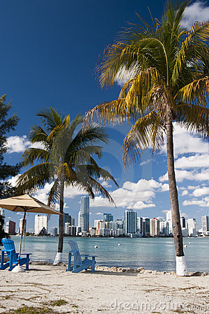 Free Miami Skyline Royalty Free Stock Images - 17747879