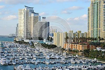 Miami Skyline and Dock