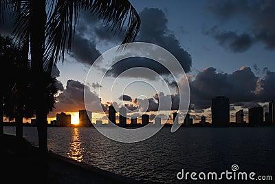 Miami skyline sunset