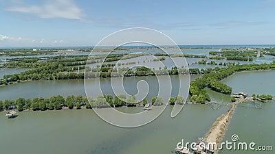 Miasteczko wśród wody w mangrowe zbiory
