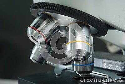 Microscope closeup
