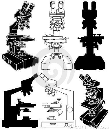 Microscope Vector 01