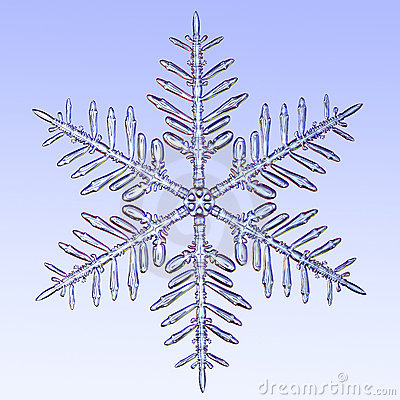 Free Microscopic Snowflake Royalty Free Stock Images - 4245029