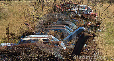 Mid 20th century rusted and abandoned automobiles