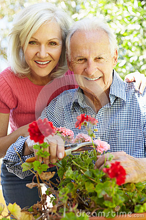 Free Mid Age Woman And Father In Garden Royalty Free Stock Photos - 54946458