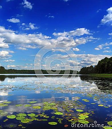 Midday lake