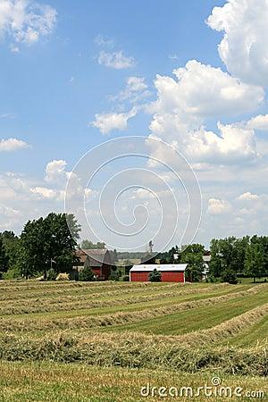 MidWest American Farm