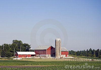 Midwest Farm With Horses