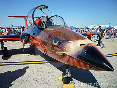 Mig 21 Fighter Nose Art Editorial Stock Image