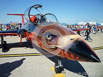 Aero L-29 Delfin Nose Art Editorial Stock Image