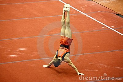 Milan Gymnastic Grand Prix 2008 Editorial Stock Image