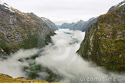 Milford track fog valley, New Zealand